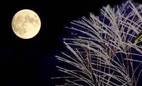 秋の夜.jpg