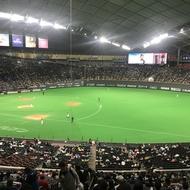 野球観戦に行きました~!
